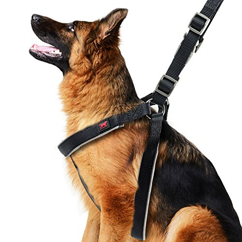 Tuff Pupper Ultra Light Heavy Duty Dog Harness | No-Pull Halter Style for Training | Rip-Resistant Ballistic Nylon | 3M Reflective Strips for Night Walking | Adjustable Fit | Padded for Comfort BkL