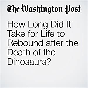 How Long Did It Take for Life to Rebound after the Death of the Dinosaurs?