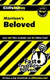 Morrison's Beloved, Mary Robinson and Kris Fulkerson, 076458667X