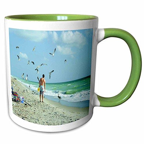 Price comparison product image 3dRose Florene Beach - Feeding Gulls n Heron On Captiva Island - 11oz Two-Tone Green Mug (mug_62151_7)