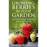 Growing Berries In Your Garden - How To Grow Organic Strawberries: Growing And Preserving: Preserve Strawberries, Canning, Grow Organic, Diabetes Cure, ... Grow Berries Indoor, Grow Strawberries)
