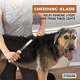 Wahl Double-Sided Shedding Blade - Orange & White
