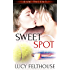 Sweet Spot (Raw Talent Book 2)