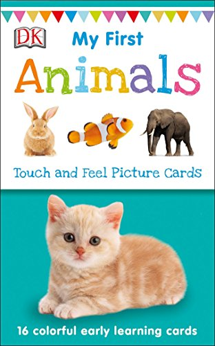My First Touch and Feel Picture Cards: Animals (My 1st T&F Picture Cards) (Pictures Animal)