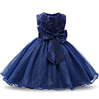 NNJXD Girl Sleeveless Lace 3D Flower Tutu Holiday Princess Dresses
