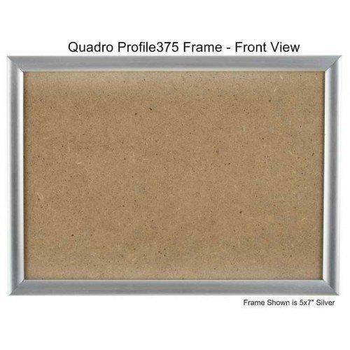 Quadroフレーム19 x 19インチ画像フレーム 19x19 シルバー 4 シルバー B00XIMNW1G