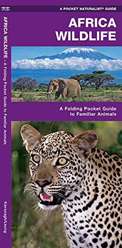 African Wildlife: A Folding Pocket Guide To Familiar Species (A Pocket Naturalist Guide)