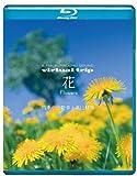 BGV - Virtual Trip Hana Flowers Shiki No Sanyasou To Kouzan Shokubutsu [Japan BD] PCXP-10057