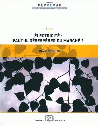Lire en ligne Electricité : faut-il désespérer du marché ? pdf epub