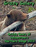 Grizzly Gallery: Grizzly Bears Of Yellowstone's Northern Range 2012 [Paperback] [2012] (Author) Ron Chester, Jim Halfpenny, Bill Hamblin, Laurie Lyman, Doug Mclaughlin