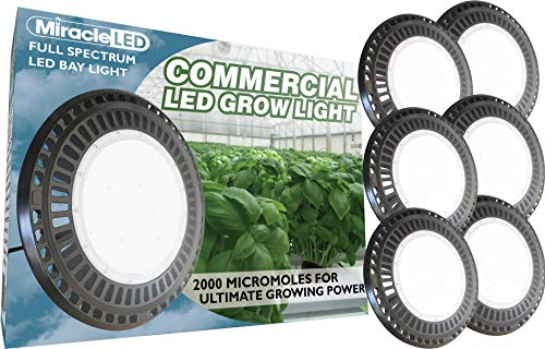 Ballast Commercial Greenhouse Fixture - Miracle LED 604697 6-Pack Grow Bay Light, Pure Daylight
