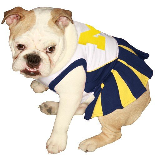 Pets First NCAA University of Michigan Wolverines Cheerleader Outfit, Dog, Medium]()