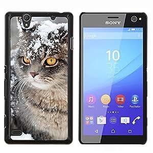 YiPhone /// Prima de resorte delgada de la cubierta del caso de Shell Armor - Invierno Nieve Manx Cat Curl Americano - Sony Xperia C4