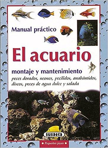 Acuario,Montaje Y Mantenimiento Susaeta Pequeñas Joyas: Amazon.es: Sergio Melotto: Libros