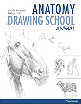 anatomy drawing school animal anatomy andrs szunyoghy gyrgy fehr 9783833157363 amazoncom books - Animal Anatomy Coloring Book