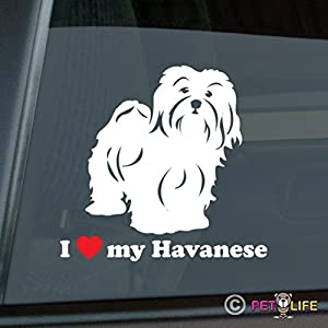 Mister Petlife I Love My Havanese Sticker Vinyl Auto Window blanquito 16