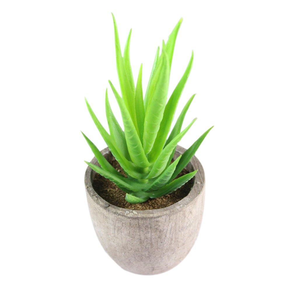 Amazon.de: Mini Künstlicher Bonsai Succulent Simulation Succulent ...