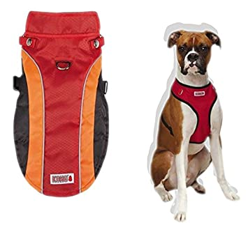 Small Dog Accessory and Fun Bundle with Kong Halter Harness Coat in