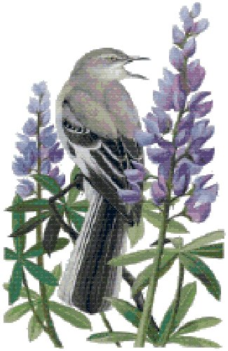 Texas State Bird (Northern Mockingbird) and Flower (Bluebonnet) Counted Cross Stitch Pattern