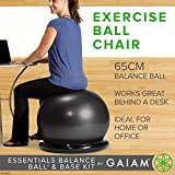 Gaiam Essentials Balance Ball & Base Kit, 65cm Yoga Ball Chair, Exercise Ball with Inflatable Ring Base for Home or Office Desk, Includes Air Pump - Navy