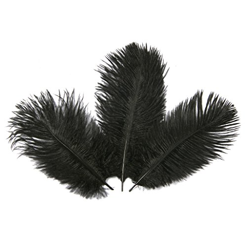 Hgshow 6-to-8-Inch Ostrich Feather, 20-Pieces, Black