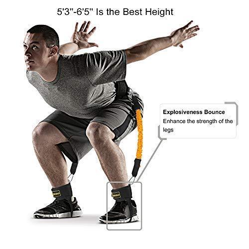 Amazon Com Toco Freido Booty Belt Workout Band Program Lift