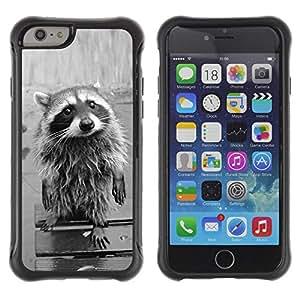 "Exotic-Star Hybrid Heavy Duty Shockproof Ballistic Fundas Cover Cubre Case para Apple 4.7"" iPhone 6 ( Divertida linda del mapache )"