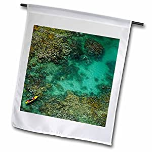 Danita Delimont - Great Barrier Reef - Life Guard, Coral Reef, Great Barrier Reef, Australia-AU01 DWA2811 - David Wall - 12 x 18 inch Garden Flag (fl_72458_1)