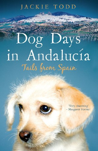 Dog Days in Andalucía: Tails from - Glasses Nelson Bailey