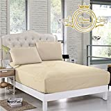 Crown Collection Hotel Beddings 600-Thread-Count 100% Egyptian Cotton 1 Piece Fitted Sheet With 12'' Deep Pocket Queen Size Damask Solid, Ivory