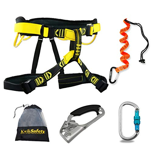 KwikSafety (Charlotte, NC Mandrill (Combo Pack) Comfort Climbing Harness, Heavy Duty Locking Carabiner, Tool Lanyard & Clip, Lightweight Padded Adjustable Half Body Waist Belt 310lb Limit Mountain (Clip Mountain Climbing)