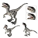 Fantare Dinosaur World Simulated Figures Action Collection Model Kid Toys (Velociraptor-Gary)