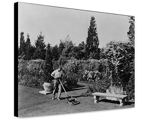 ClassicPix Canvas Print 20x24: Gardener Pushing Lawn Mower, Posed to Illustrate Rudyard Kipling's.