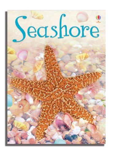 Download Seashore (Usborne Beginners) ebook