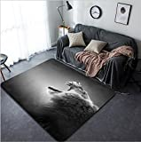 Vanfan Design Home Decorative Lion displays dangerous teeth - Kruger National Park - South Africa Modern Non-Slip Doormats Carpet for Living Dining Room Bedroom Hallway Office Easy Clean Foo