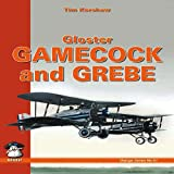 Gloster Gamecock and Grebe, Tim Kershaw, 8361421173