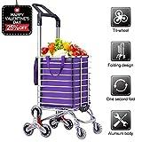 Best Grocery Carts - AmnoAmno Folding Shopping Cart-Stair Climbing Cart- Transit Utility Review