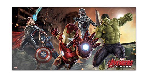 Avengers Age of Ultron Scene Setter, 5ft x 2.5ft by Unique Party