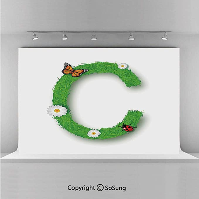 Amazon Com 20x10ft Vinyl Letter C Backdrop For Photography Capital C With Grass Greenland Spring Flourishing Nature Themed Character Decorative Background Newborn Baby Photoshoot Portrait Studio Props Birthday P Camera