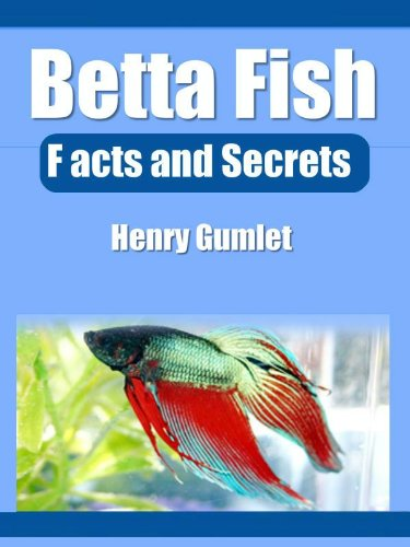 Betta Fish: Facts and History