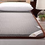 DHWJ Leaning hard mattress bed mattress,Dormitory mattress mat,Collapsible tatami mat quilt-A 150x200cm(59x79inch)