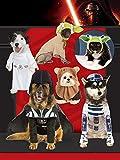 Star Wars Classic Yoda Pet Costume, Medium
