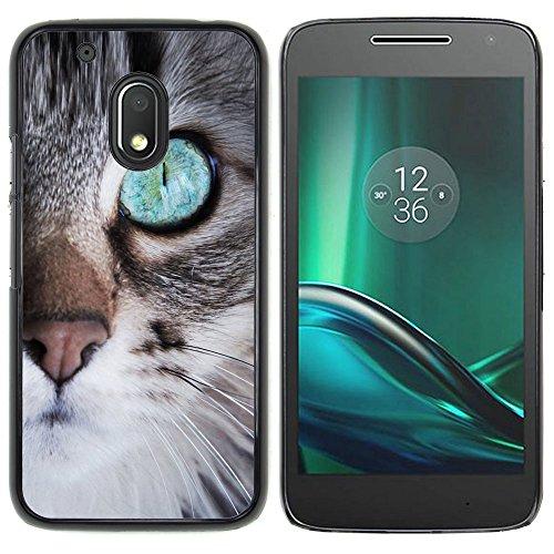 STPlus Gato en una caja Animal Carcasa Funda Rigida Para Motorola Moto G4 Play #9