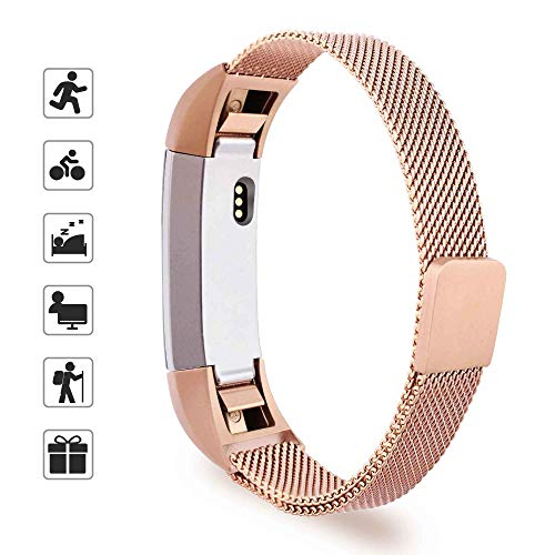 Expert choice for alta fit bit bands rose gold