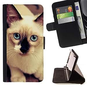 Momo Phone Case / Flip Funda de Cuero Case Cover - Gato siamés azul blanca felina; - MOTOROLA MOTO X PLAY XT1562