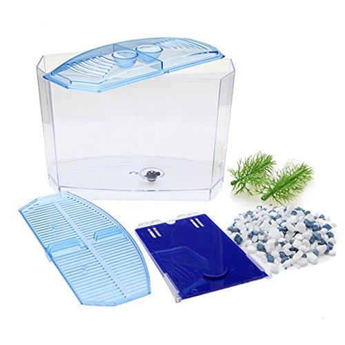 Angelwing aquatic aquarium betta box bowl tank dividers for Fish tank divider 5 gallon