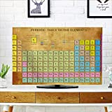 Jiahonghome Front Flip Top Chemistry Elements for Classroom Geek Science Lovers Vintage Style Print Multicolor Front Flip Top W20 x H40 INCH/TV 40'-43'