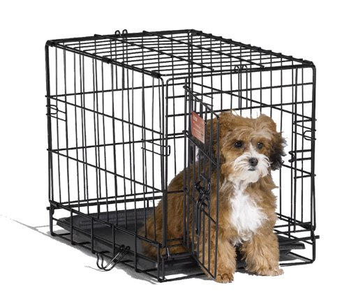 MidWest 18' iCrate Folding Metal Dog Crate w/ Divider Panel, Floor Protecting 'Roller' Feet & Leak-Proof Plastic Tray; 18L x 12W x 14H Inches, Toy Dog Breed