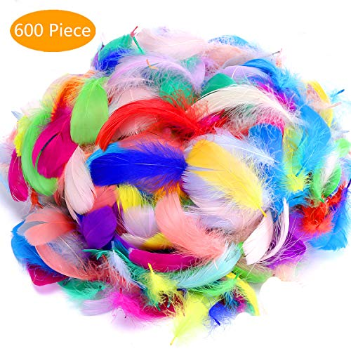 600PCS Colorful Feathers for DIY Crafting,Wedding,Party Decorations,Feather Mask,Windbell and Earrings