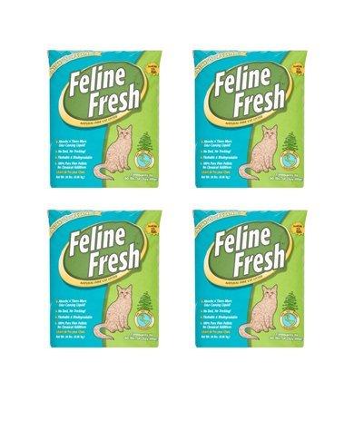 Feline Fresh Natural Pine Cat Litter, 20 lbs (20 lbs pack of 4)